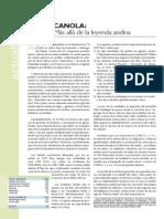 Archivos Revista Enero08 Actualidad Sierra