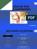 INFECCION DE VÍAS AEREAS SUPERIORES luis