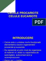 Curs Nr. 1 B Celule Procariote Si Celule Eucariote (1)