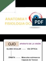 Anatomia y Fisiologia Del Ojo