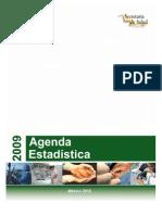ILE2007 2009 AgendaEstadistica2009 DF