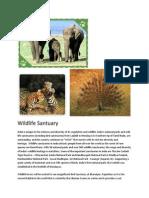 Wildlife Santuary