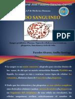 Tejido Sanguineo - p.and.A
