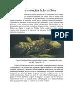 Origen y evolución de los anfibios.docx