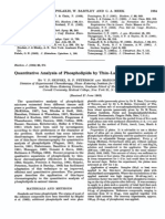 biochemj00782-0164