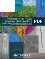 Identification Key for Agriculturally Important Plant-parasytic Nematodes