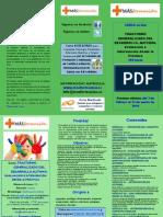 Tríptico Curso TGD-Autismo +Formacion
