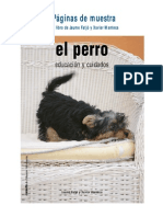 Pag Muestra Perro