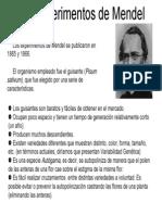 DOCA5034 Mendelismo C01 Los experimentos de Mendel.pdf