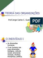 TEORIA DA ORGANIZAÇÕESRev2011
