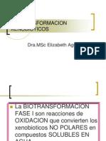 BIOTRANSFORMACION XENOBIOTICOS