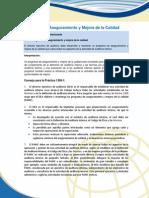 1300-1 Programa de Aseguramiento y Mejora de La Calidad