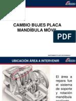 CAMBIO DE BUJES PLACA MOVIL TRIT.pdf