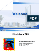 Basic Principles of SDH