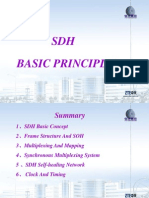 SDH Principle