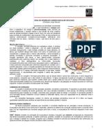 SEMIOLOGIA 04 - Semiologia Do Aparelho Cardiovascular Aplicada - MED RESUMOS (SET 2011)