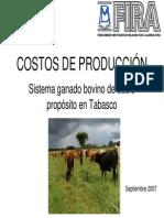 GANADO_BOVINO_DOBLE_PROPOSITO_Tabasco-Analisis_de_Costos.pdf