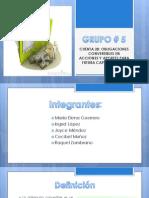 Grupo (1)