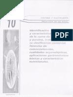 Tema 10 IDENTIFICACION Y CARACTERISTICAS DEL LA CARNE DE OVINO Y PORCINO.pdf