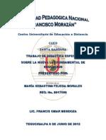 Trabajo Sobre La Lectura de La Nueva Ley Fundamental NLF