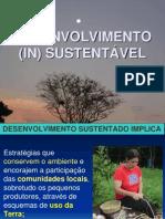 7 DESENVOLVIMENTO (IN) SUSTENTÁVEL
