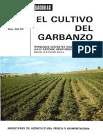 Garbanzo Hd 1982 05