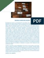 Historia y Origen Del Archivo
