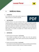 Derecho Procesal Penal (completo).pdf
