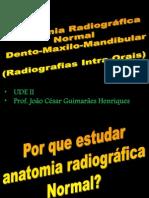 aula anatomia radiográfica joão césar