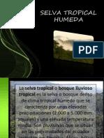 la selva tropical humeda (2).pptx