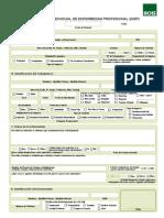 ACHS Formulario+DIEP (1)