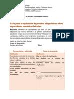 Guia para la aplicación de pruebas diagnosticas