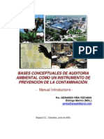 Bases Auditoria Ambiental