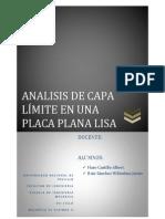 Analisis de Capa Limite en Una Placa Plana Lisa