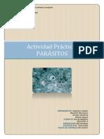 Informe Actividad laboratorio Parásitos