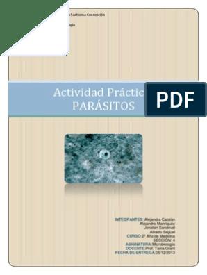 este es tu cerebro en parásitos pdf