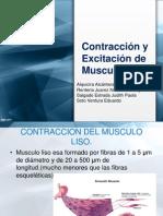 Contraccion y Exitacion de Musculo Liso