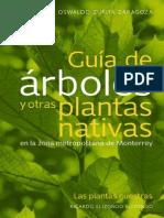 Guiadearboles Copy