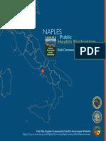 Naples Public Health Evaluation Case Study May 2013