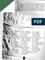 Limba Latina - manual pentru clasa a VIII-a