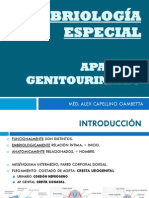 APARATO_GENITOURINARIO_-_DR._CAPELLINO