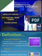serum protein electrophoresis