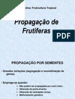 Aula Propagacao 2010