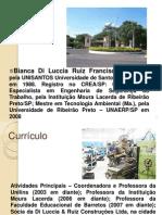Aula 1 - Gerncia de Riscos UNULINS T11- Apresentao e Introduo