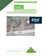 Como Cultivar Plantas de Bulbo