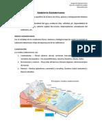 Ambientes Sedimentarios GEOMORFOLOGÍA.pdf
