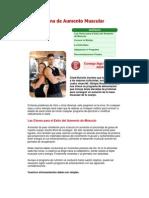 Programa de Aumento Muscular