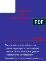 01.an Introduction to the Respiratory System
