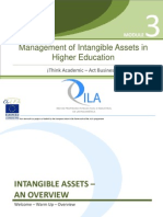 2 Intangible Assets Overview En