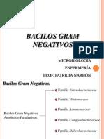 bacilosgramnegativos-120511194827-phpapp01
